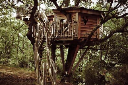 Cabane Jaspée d'Arbrakabane - Hus i træerne