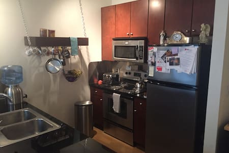 Lower Travis Heights 1 bedroom Apartment - Austin - Apartment