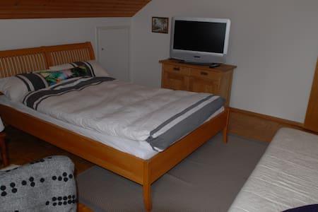 Cosy and sunny 1-Bedroom apartment in Langenargen - Langenargen
