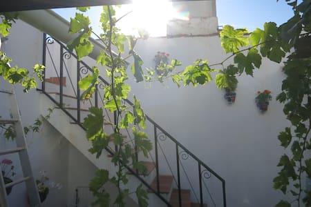 Andalusisk charme i Malagabjergene - Hus