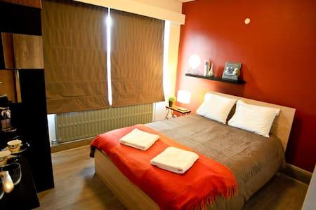 Room into a family apto at LEUVEN - Lakás