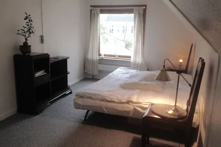 Large room in a lovely town house in Odense center - House