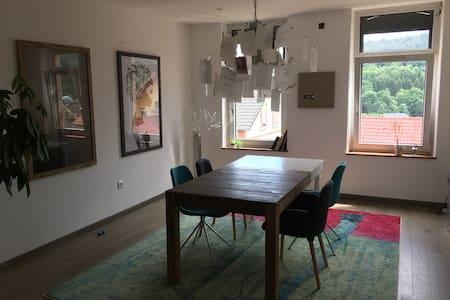 Maison contemporaine avec patio et jardin - Huis
