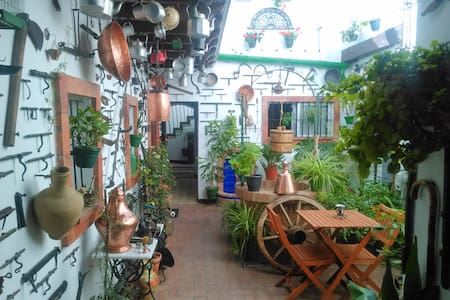 4. Jerez center, tio pepe and relax - Jerez de la Frontera