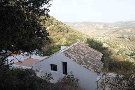 Casa Luca is a 4 bedroom villa set in olivegroves - Iznájar - Villa