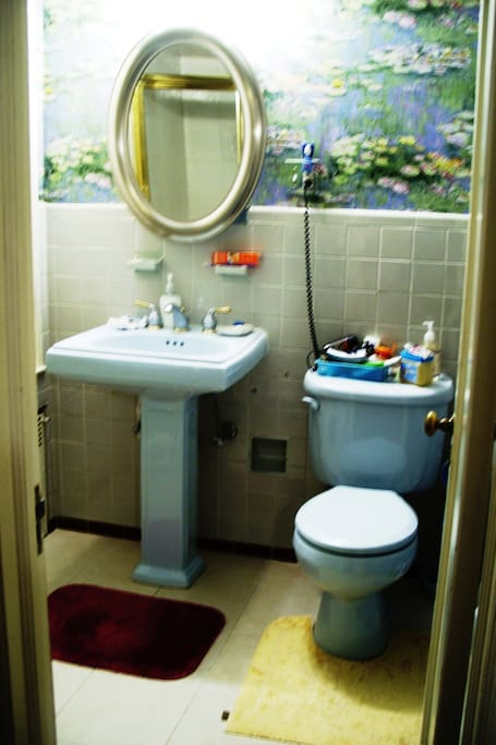 Blue master bath-remodelled,shower not shown,shared with one person