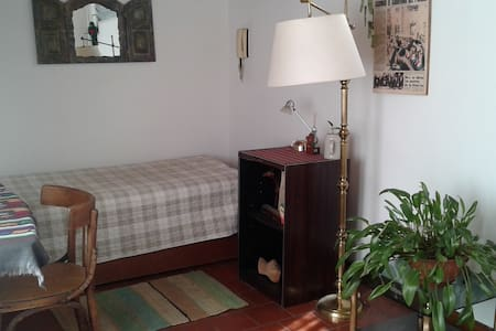 Lovely sunny private room + terrace - Buenos Aires - Apartment
