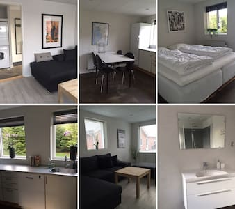 Flot nyrenoveret lejlighed - Appartement