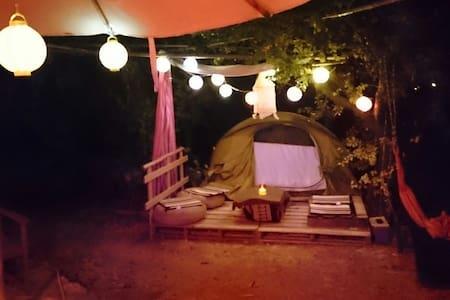 Apt dans un jardin, petite tente ⛺ - Apt - Tent