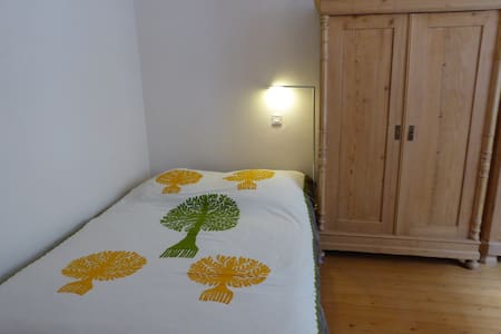 une chambre dans appartement hausmanien calme - Belfort - Lejlighed