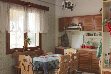 House in Kastellia village - Fokida - House