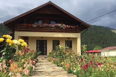 Zen House close to the lake and mountain - Bistricioara