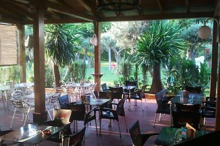Hostal Restaurante Al-Andalus S.9 - La Guijarrosa - Lainnya