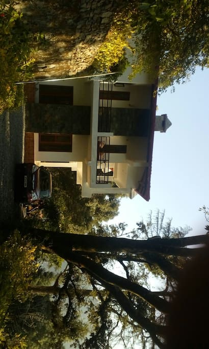The house is surrounded by trees. This is the side view and the entrance and you can also see the stone fireplace.