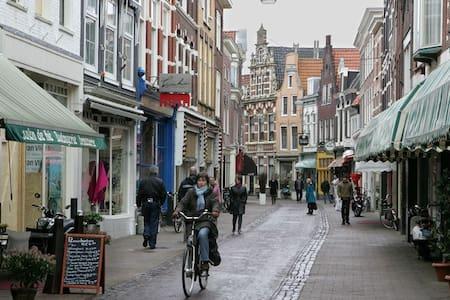 Heerlijk huisje Centrum van Haarlem - Appartement