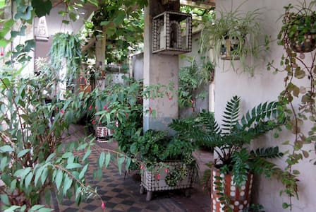 Artist house with green patio - Rumah
