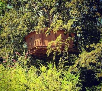 La cabane au fil de l'eau - Treehouse