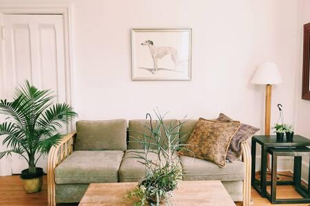 The Cascadilla Flat - Downtown - Apartment