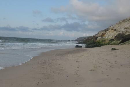Celia Beachouse q verde - Pis