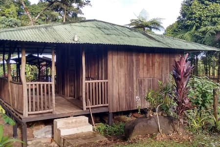 Paradise Falls Private Mountain Cabins - Guapiles - Natur-Lodge