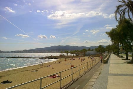 The best location in Palma - Palma  - Apartment