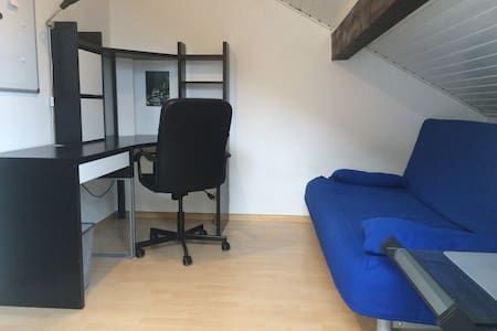 NEW! Cosy room in Freiburg, free parking/near tram - Şehir evi