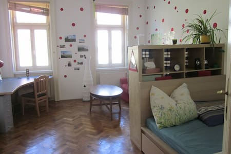 Big Room in students flat near center :-) - Vienne - Appartement