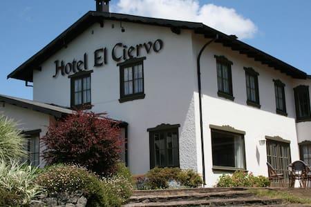 Hotel El Ciervo-Villarrica - Szoba reggelivel