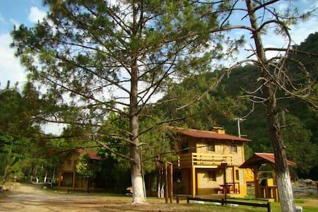 Cabañas en las Montañas / Apple Tree Cabañas - Blockhütte