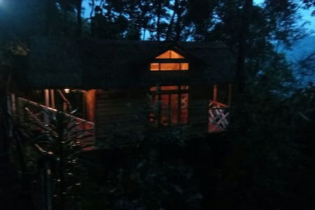 (Bustee)- Village Rejuvenation Farmhouse Treehouse - Gangtok - Casa en un árbol