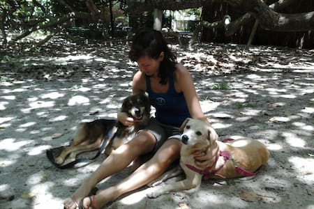 Nature & dog-lovers experience in Bahia: Suite Rió - Arembepe