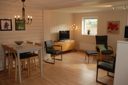 Newly renovated apartment, close to light rail. - Bergen - Lägenhet