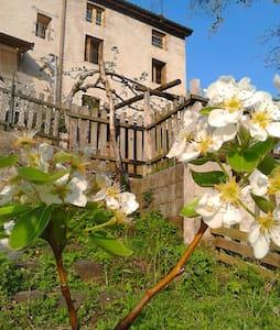 Porzione di casa rustica - Lugo di Vicenza