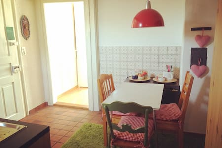 lovely cozy budget apartment! - Dietikon