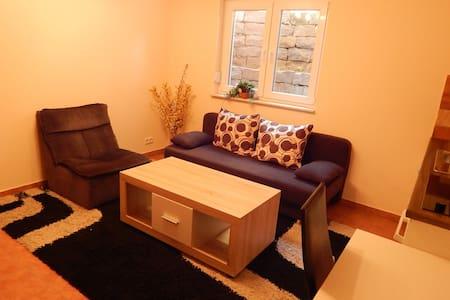 2 Zi. Apartment mit Küche und Bad bei Frankfurt - Apartament