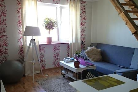 Comfortable studio in a quiet area - Pärnu - Talo