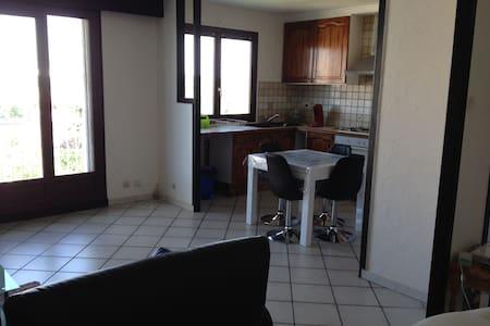 Bel appartement donnant sur le stade parc ol - Décines-Charpieu