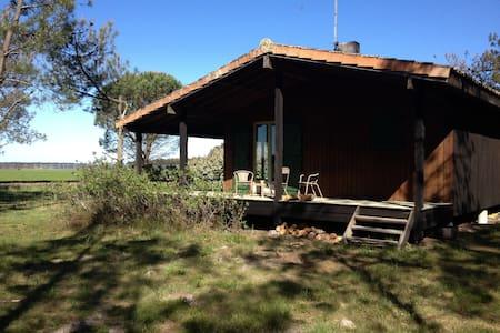Villa bois dans la nature - Daire