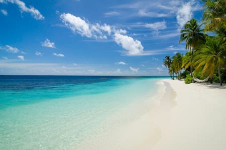 Equator Dream - Maafushi - Bed & Breakfast