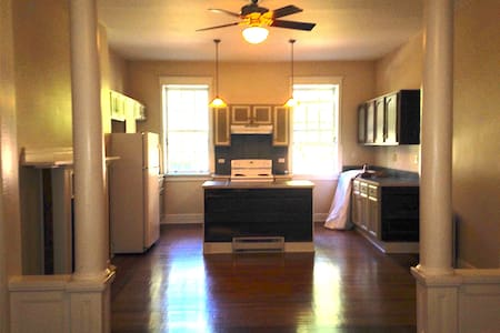 Sun-filled Brownstone in Downtown Troy - Daire