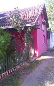 Petrovaradinska Ada - Ház