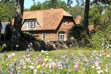 Sonnige Dachgeschosswohnung (65qm) - Pis