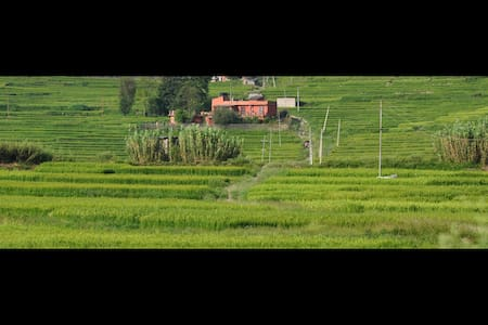 The Whole House in the ricefields - Katmandú - Bed & Breakfast