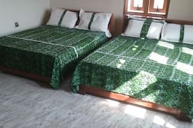 Picture of Room with 2 double beds