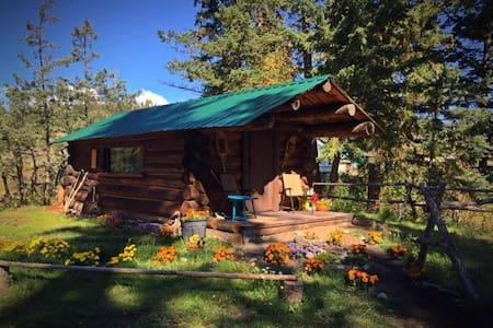 Rustic Cabin - Annat
