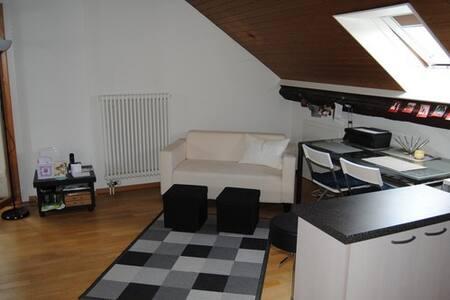 Lovely furnished studio in Carouge (latin quarter) - Wohnung