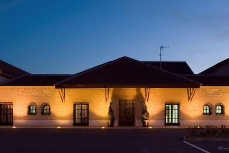 Bodegas Hacienda Albae - Argamasilla de Alba - 城堡