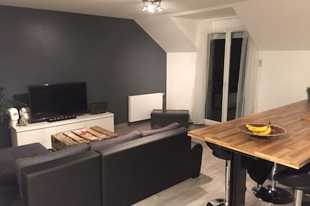 Appartement proche Roissy CDG - Appartement