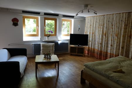 Large Guest Room with extra Bathroom - Zorneding - Casa