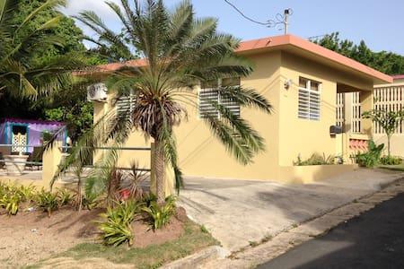 Casa Los Monos,  is a brand new rental property - Maison